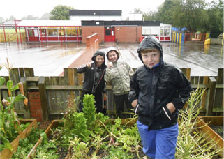 Children Gardening at Tibberton School